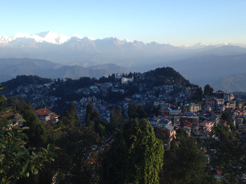 Village in the Himalayan mountains, Darjeeling India - Young Mountain Tea