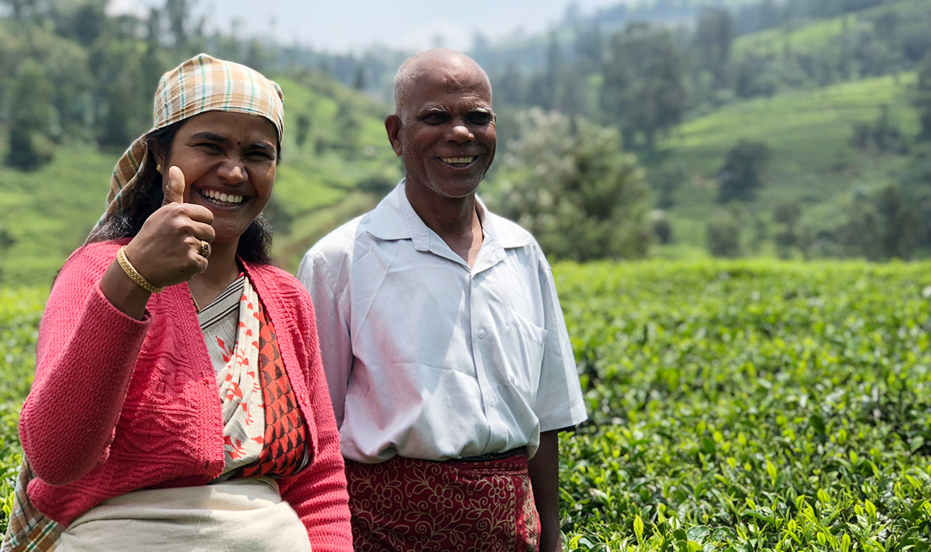 Female and male tea farmers standing in lush and sunny tea fields in the Nilgiris, with big smiles. The woman is giving the thumbs up.