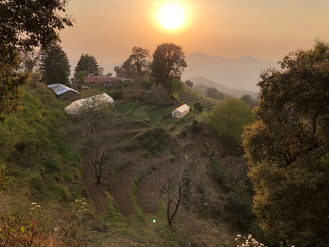 Organic vegetable farm on a mountain top overlooking Kumaon India with sunset in the background