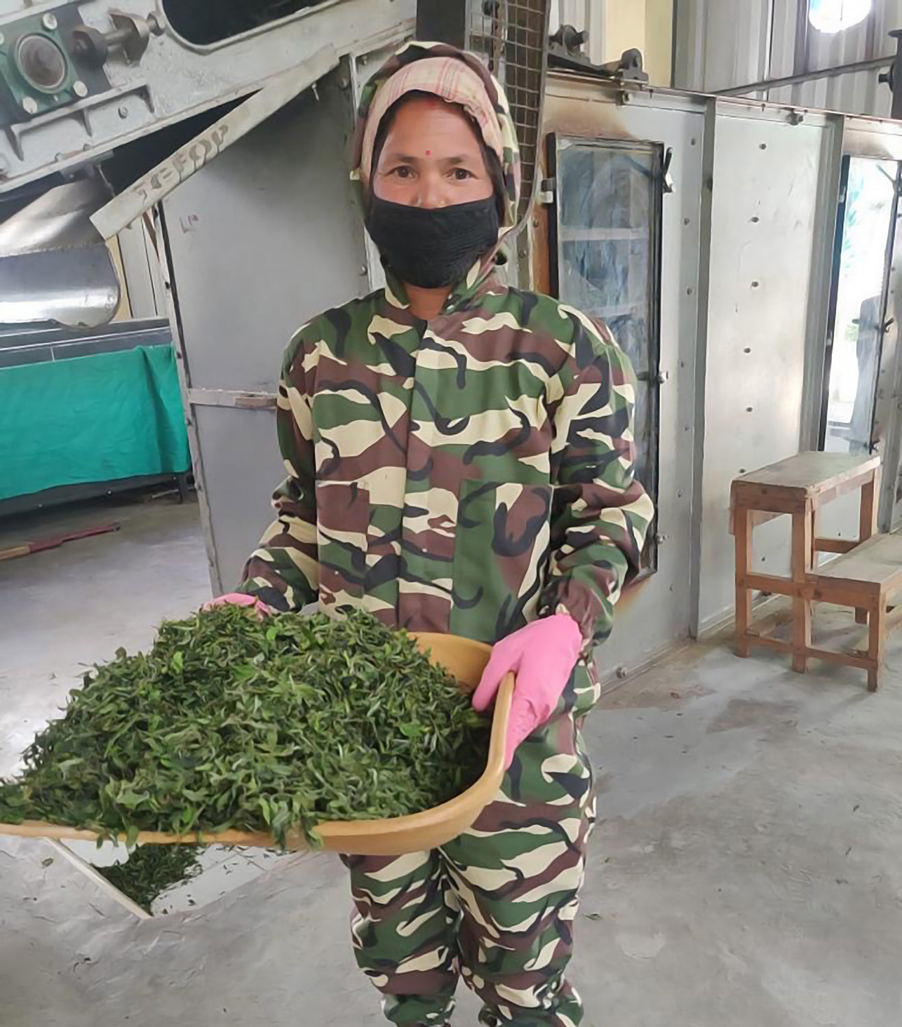 Tea worker suited up in camo, mask, and gloves