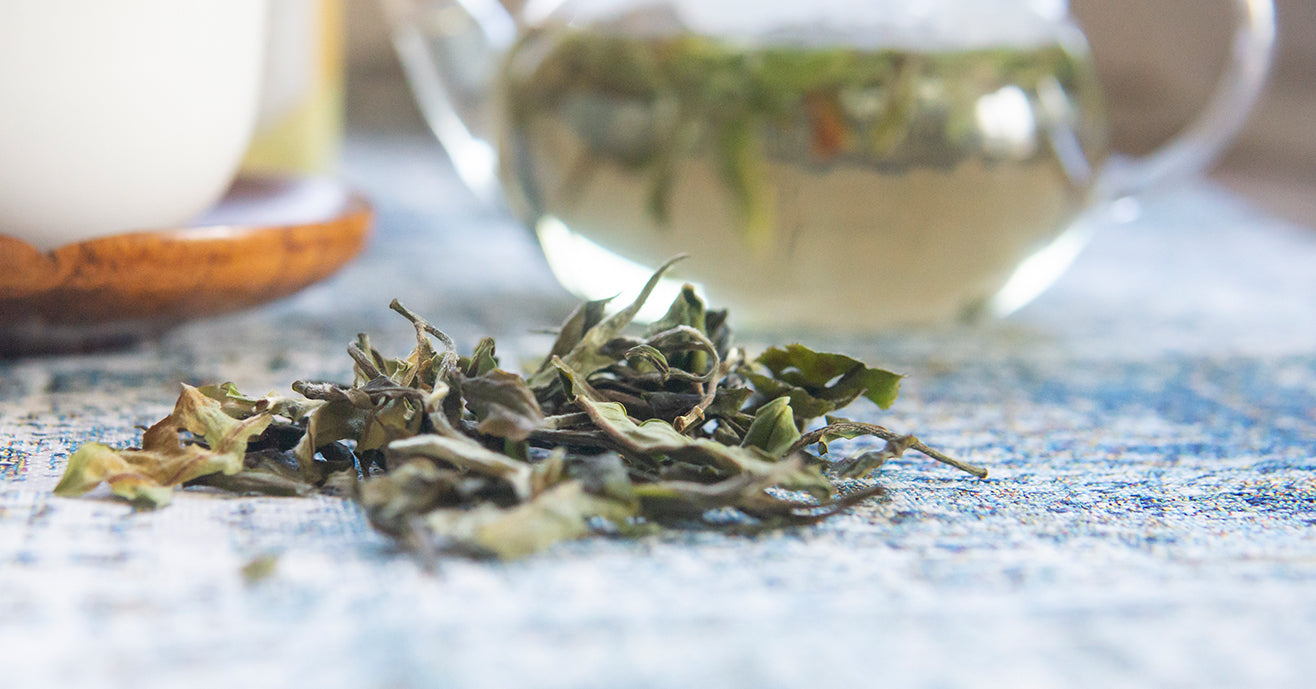 Kumano white tea leaves and a glass teapot with the brew