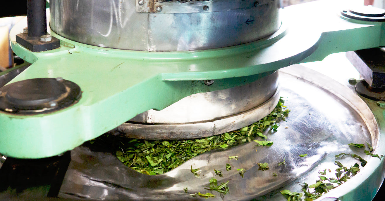 Machine rolling tea leaves in India