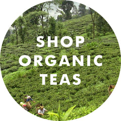 Shop Organic Teas from India and Nepal at Young Mountain Tea