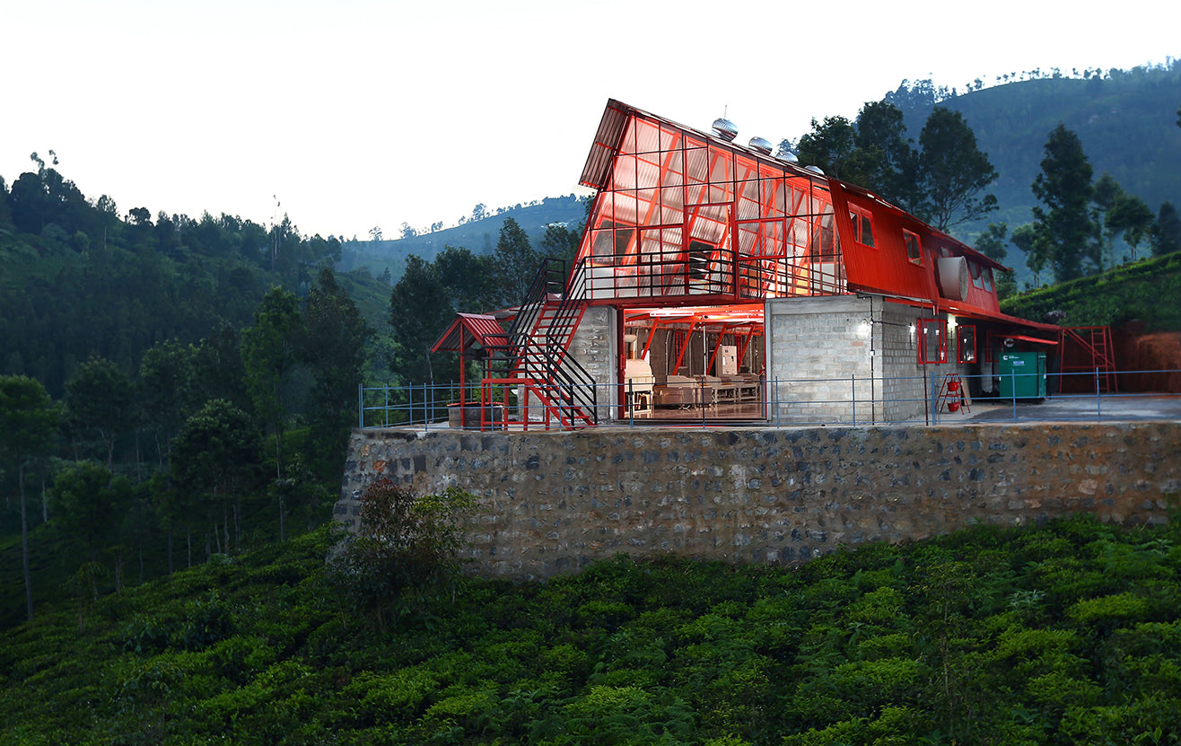 Tea Studio building nestled among lush foliage in souther  India