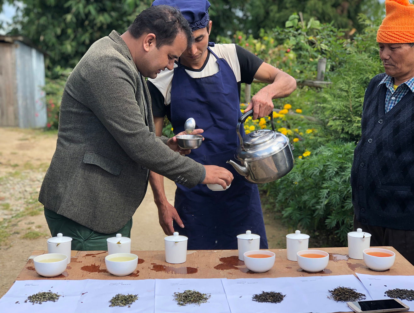 Cupping tea in Tinjure farm, Nepal