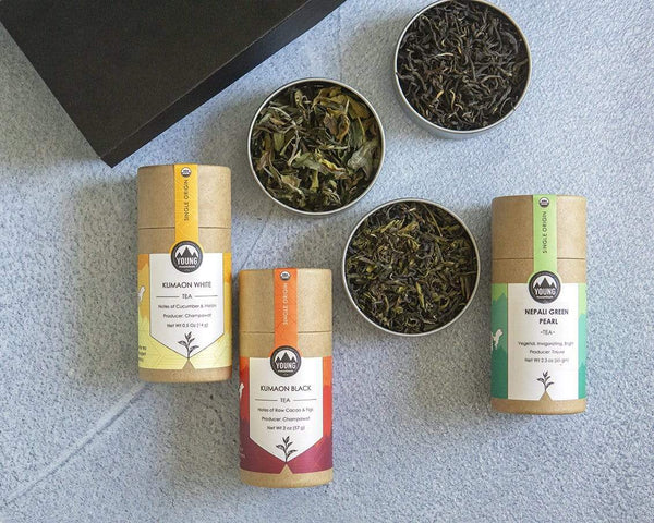 Young Mountain Tea Gifts The Gift of Tea
