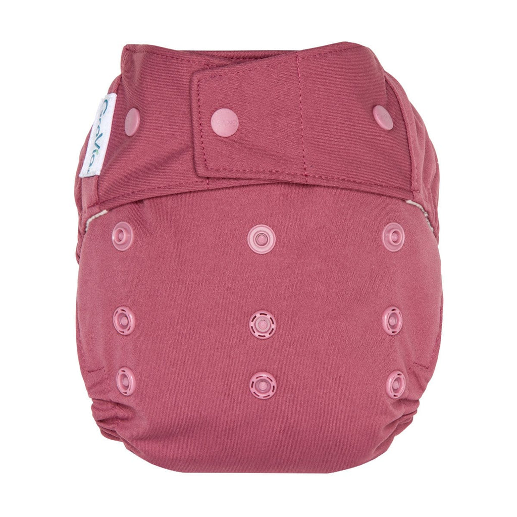 Grovia Hybrid All In Two Nappy - Snap Close - Tushie