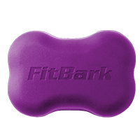 FitBark 2 Cover, Royal Purple