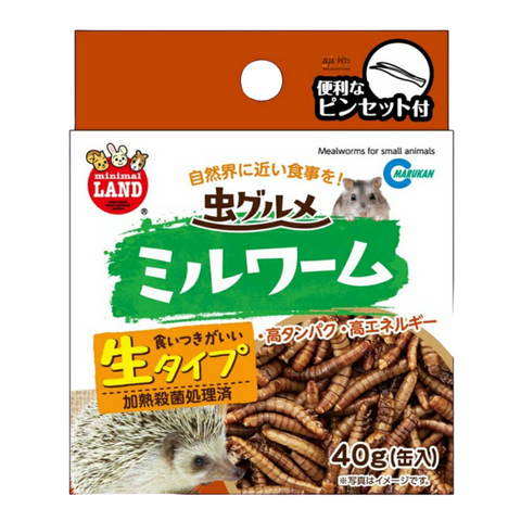 Marukan Mealworms - 40g