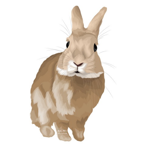 Rabbits (Mammals) Pet Portrait (Cartoon Illustration)