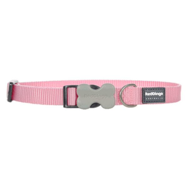 Red Dingo Bucklebone Collar - Classic Range (Pink)