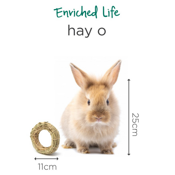 Oxbow Enriched Life Hay-O