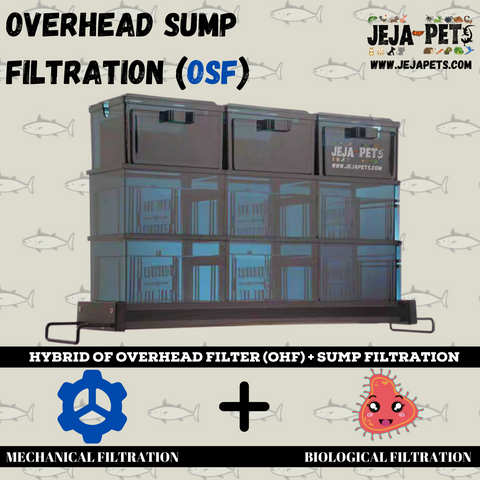 Overhead Sump Filtration (OSF)