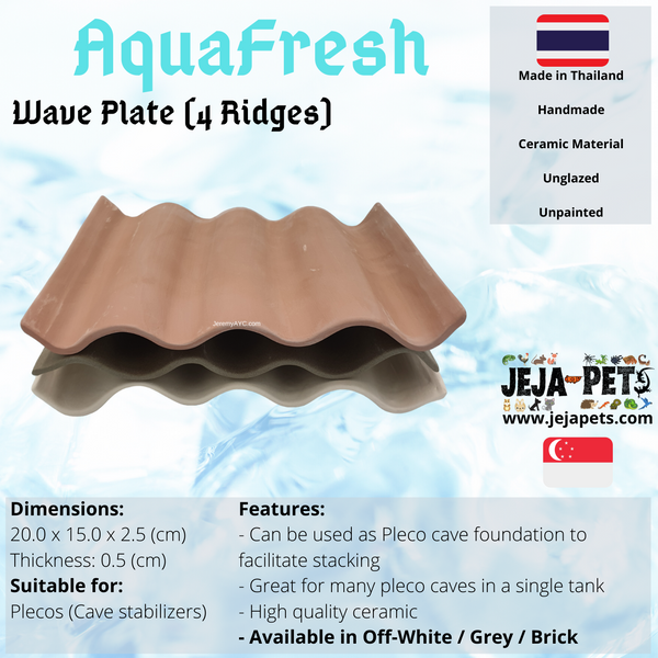 Aquafresh Wave Plate (4 Ridges)