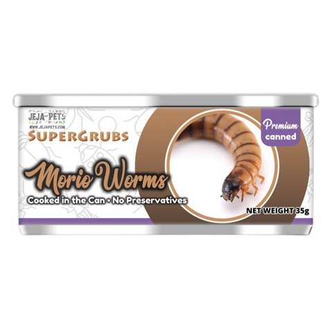 [PREORDER] Supergrubs Canned Morio Worms (Super Worms) - 35g