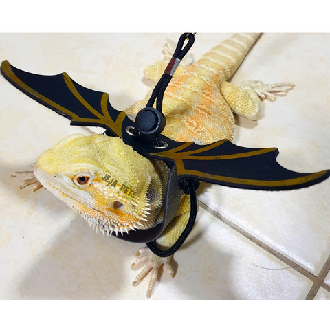 Dragon Wing Leash