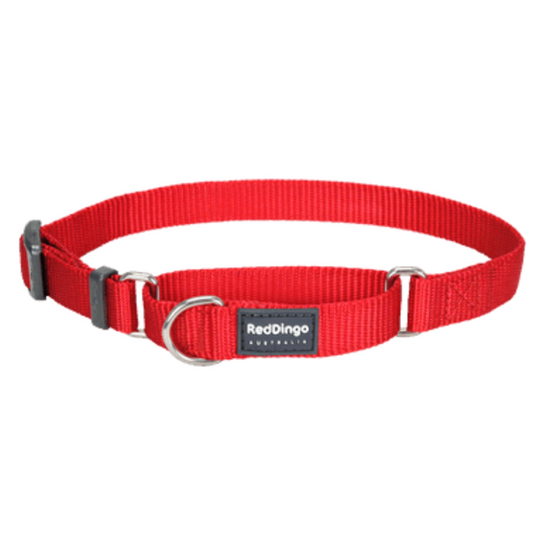 Red Dingo Martingale Half Check Collar - Classic Range (Red)