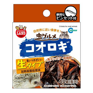 Marukan Canned Cricket - 40g
