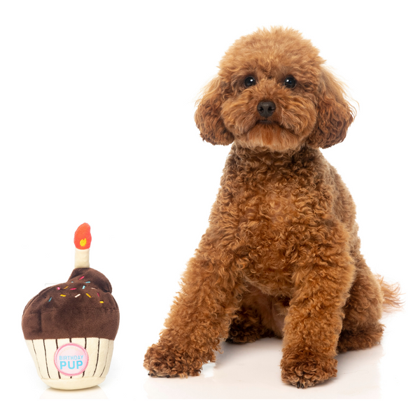 FuzzYard Plush Toy (Birthday Cupcake)