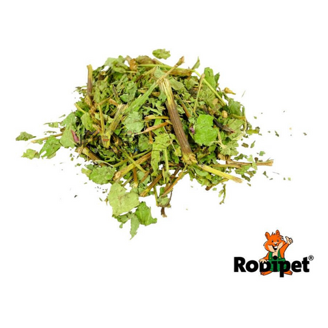 Rodipet Nature's Treasures Echinacea - 150g