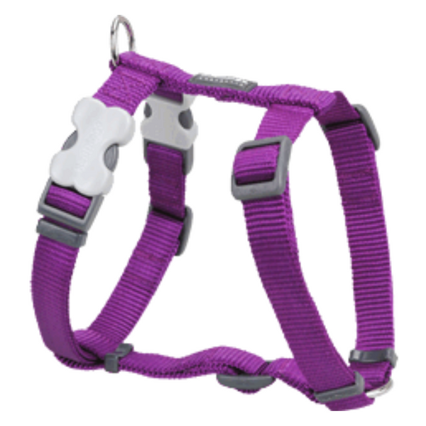 Red Dingo Dog Harness - Classic Range (Purple)