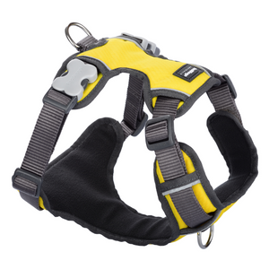 Red Dingo Dog Padded Harness (Yellow)