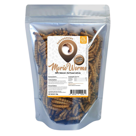Supergrubs Dried Morio Worms - 100g