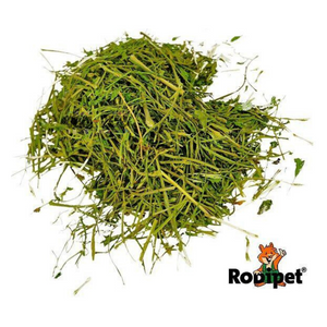 Rodipet Nature's Treasures Parsley Stalks - 150g