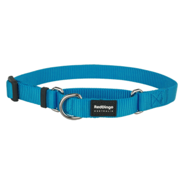 Red Dingo Martingale Half Check Collar - Classic Range (Turquoise)