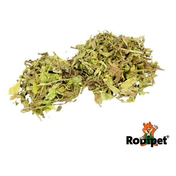 Rodipet Nature's Treasures Ribwort Plantain - 80g