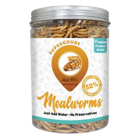 Supergrubs Freeze Dried Mealworms - 100g / 500g