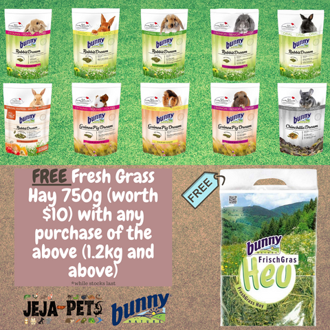 [PROMO] Bunny Nature Herbivore Diet Promotion [FREE GRASS HAY]*