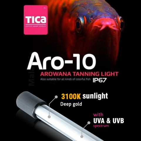 [NEW] Tica Aro-10 Tanning Light (3100K)