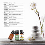 Lagunamoon Essential Oils Top 10 Gift Set with Travel Bag