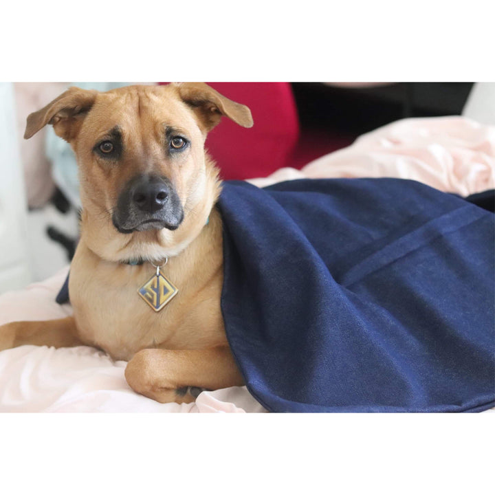 Weighted Blankets For Dogs