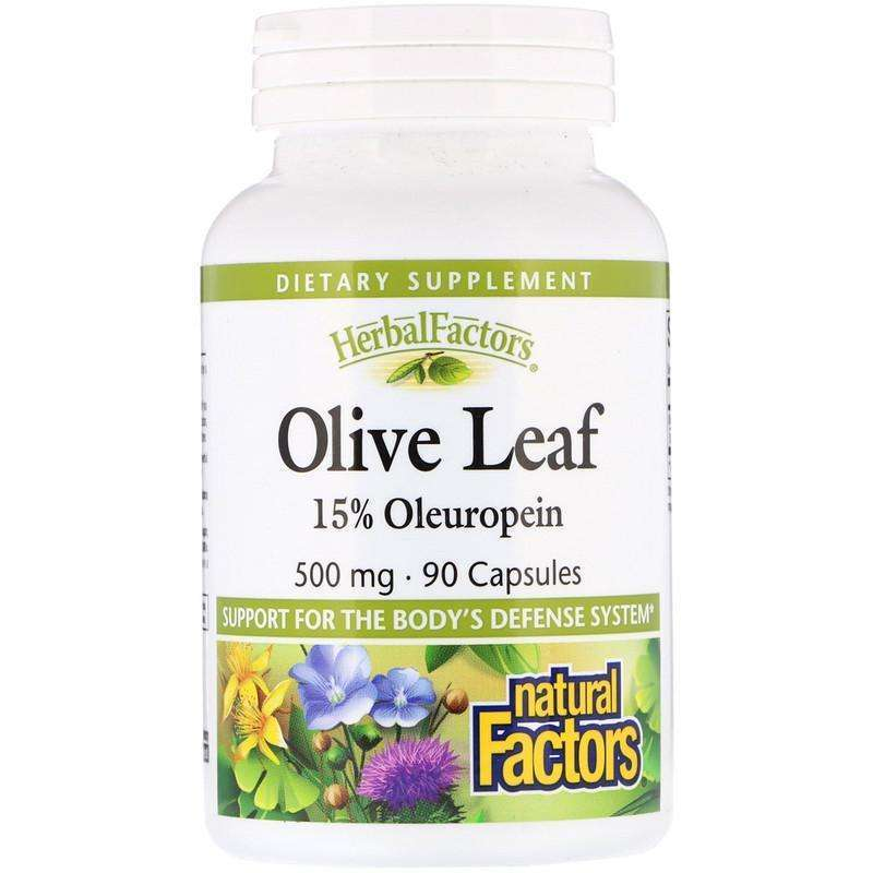 Natural Factors - Olive Leaf, 500 Mg - 90 Capsules - AM VITAMINS