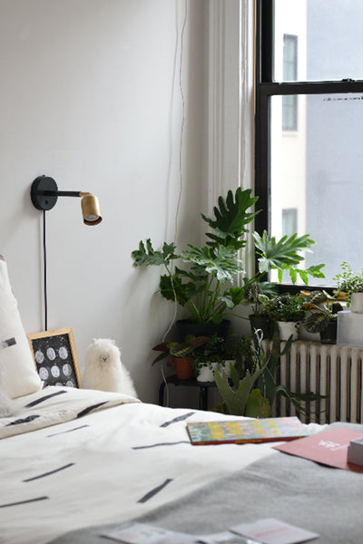 sold out - 11/10 Mindful Plant Swap Gathering