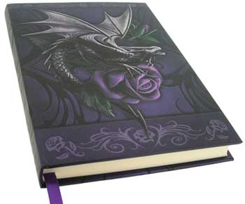 Dragon Beauty journal