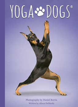 Yoga Dogs tarot by Borris & DeNicola
