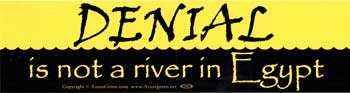 Denial Is Not A River In Egypt bumper sticker
