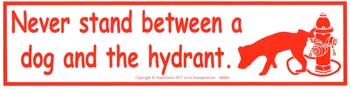 Never Stand Between a Dog and the Hydrant bumper sticker