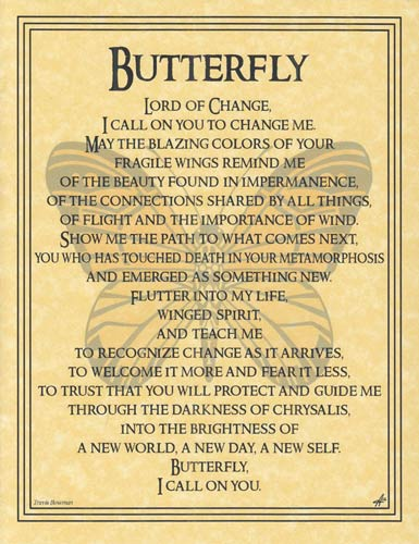 Butterfly Prayer poster