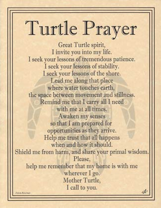 Turtle Prayer poster