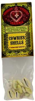 Cowries Shells (Coquilles Cauries)