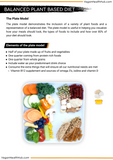 Muscle Gain Meal Plan x Comprehensive Vegan Nutrition Guide