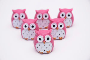 Pink Owl Glossy Grin Lip Gloss Containers - DIY Empty refillable containers