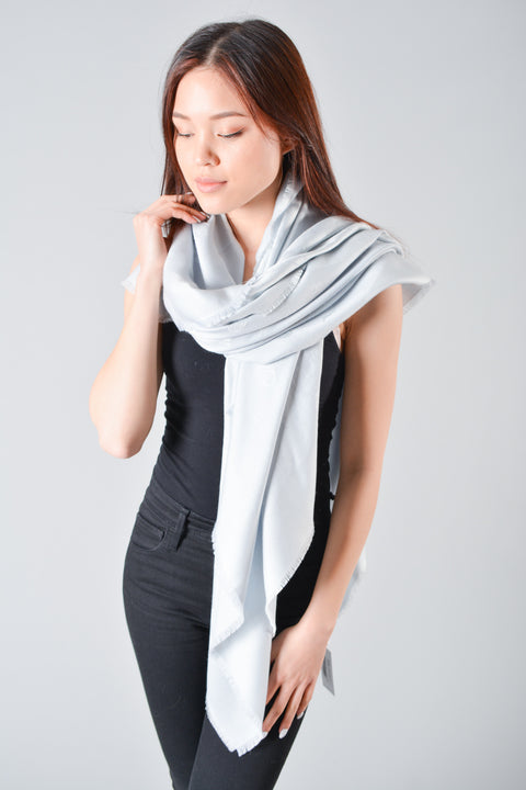 Christian Dior Blue Grey Scarf