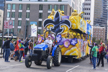 Load image into Gallery viewer, Mardi Gras PARTY Box!