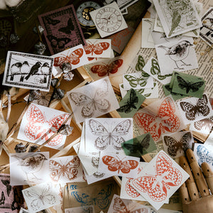 Sketch Collection Decorative Papers
