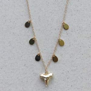 Gold Shark Tooth Small with Coins Necklace